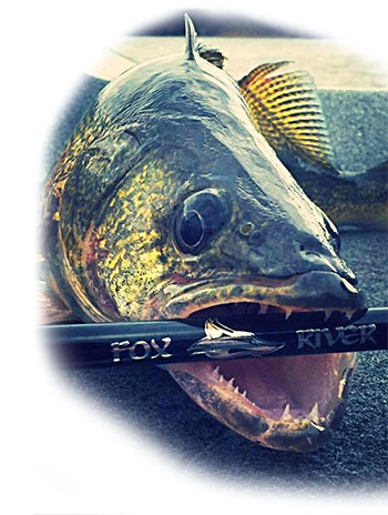 Fox River Rods Walleye Fishing